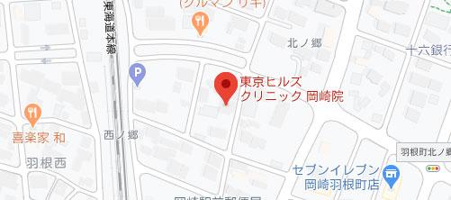 東京ヒルズクリニック 岡崎院地図