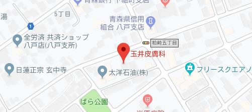 玉井皮膚科医院地図