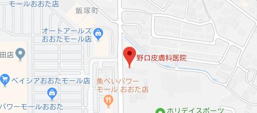 野口皮膚科医院地図