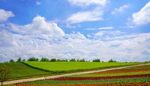 北海道の風景画像