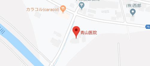 青山医院地図