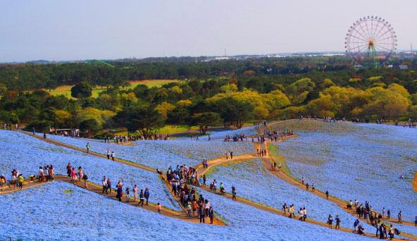 茨城県の風景画像