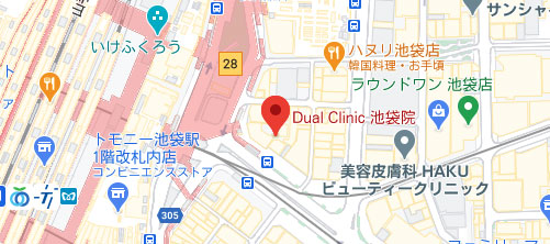 THE MEDICAL SALON.地図