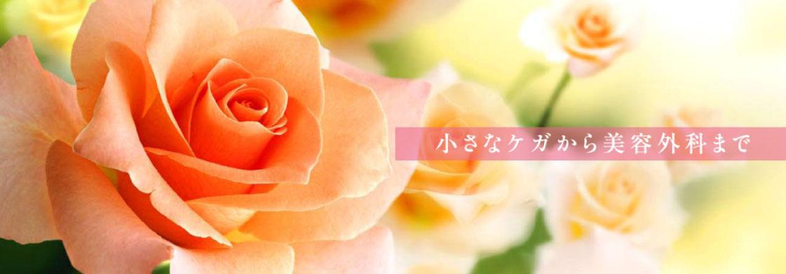 野崎クリニック形成外科・美容外科画像