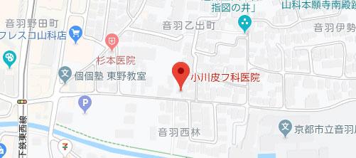 小川皮フ科医院地図