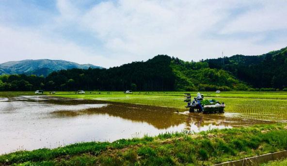 宮城県の風景画像