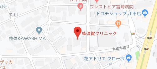 蜂須賀クリニック地図