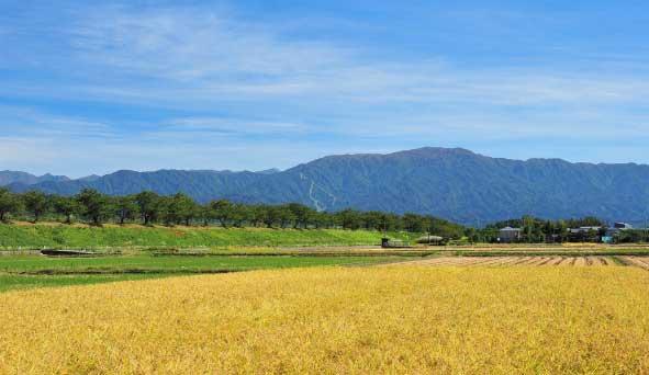 新潟県の風景画像