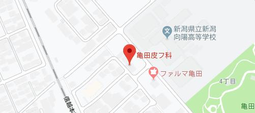 亀田皮フ科地図