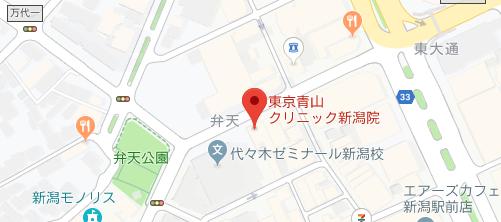 東京青山クリニック新潟院地図