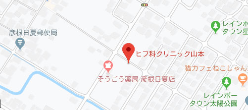 ヒフ科クリニック山本地図