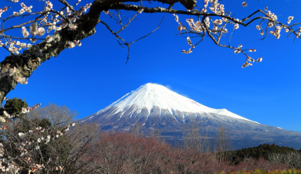 静岡県の風景画像