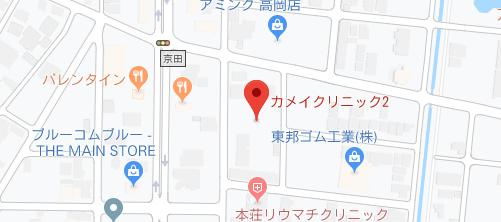 カメイクリニック 高岡院地図